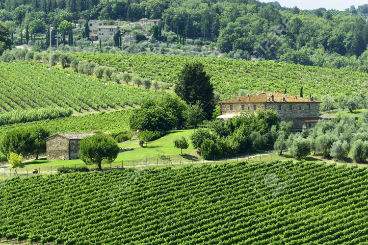 Toskana'nın Kalbi Chianti Tatiliniz İçin Büyüleyici Bir Atmosfer Sunuyor